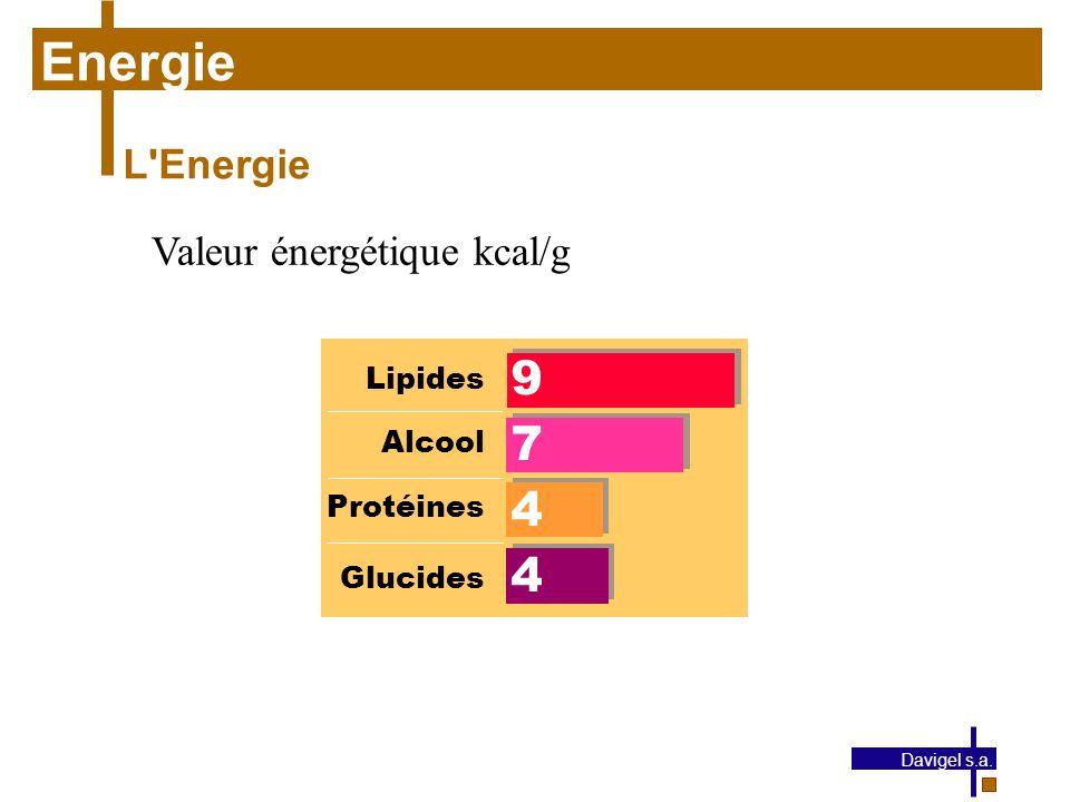 Energie 9 7 4 L Energie Valeur énergétique kcal/g Lipides Alcool