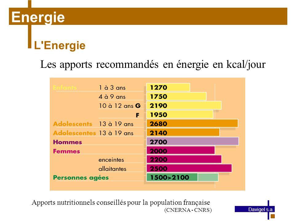 Energie L Energie Les apports recommandés en énergie en kcal/jour