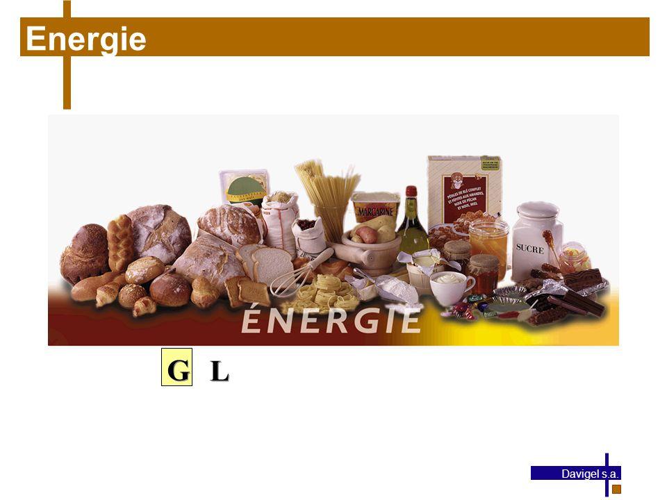 Energie G L Davigel s.a.