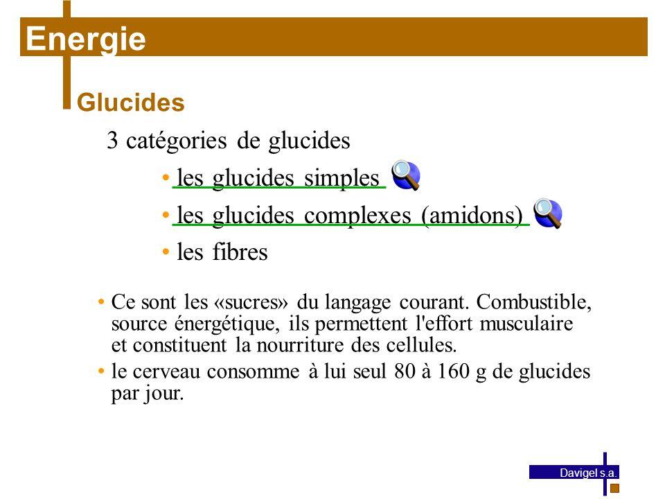 Energie Glucides 3 catégories de glucides les glucides simples