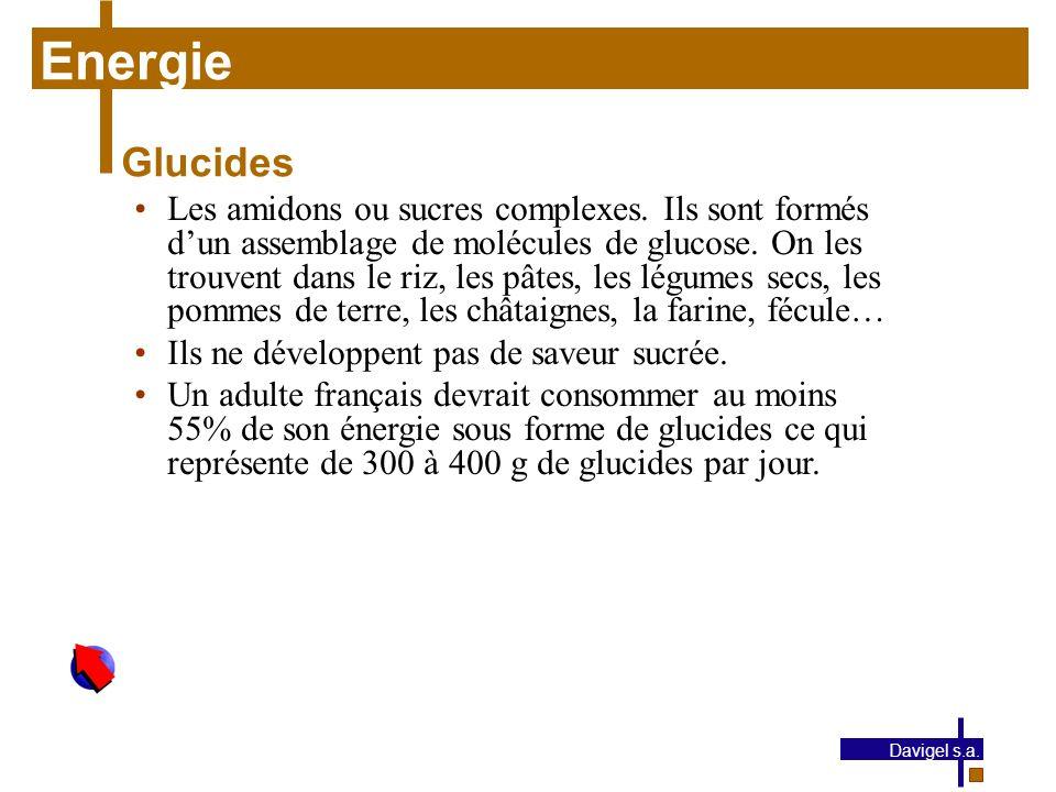 Energie Glucides.