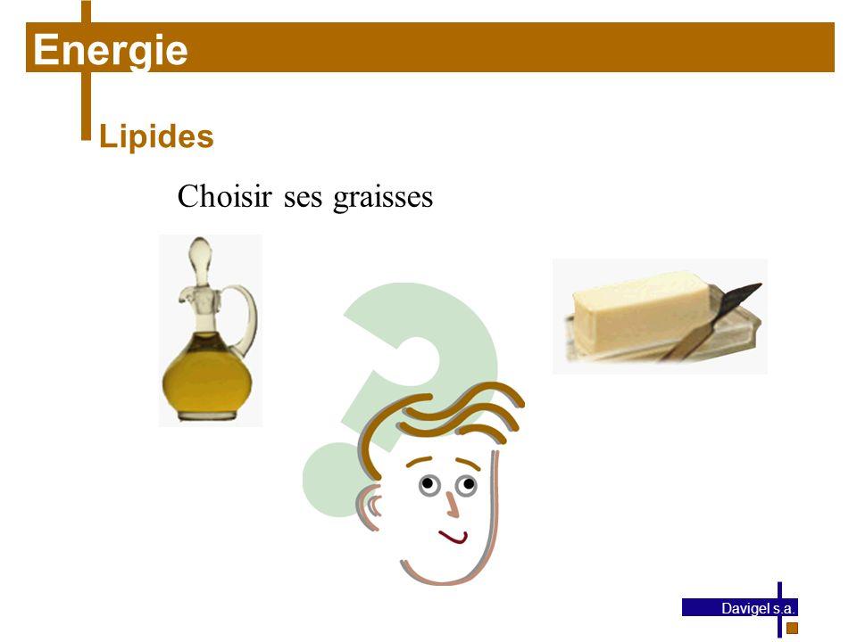 Energie Lipides Choisir ses graisses Davigel s.a.