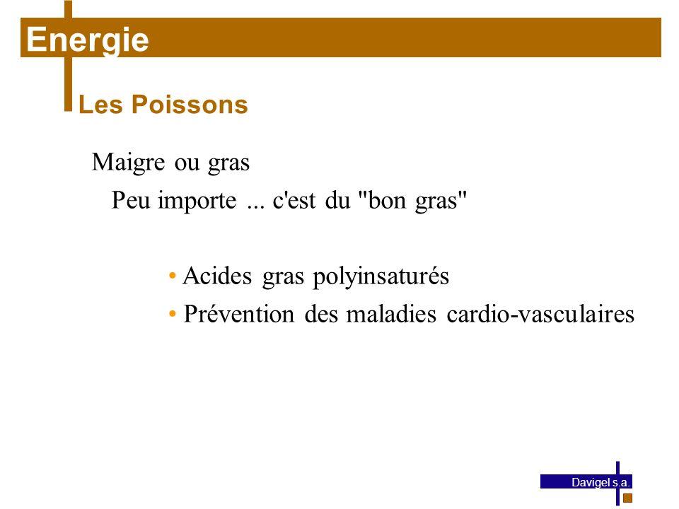 Energie Les Poissons Maigre ou gras