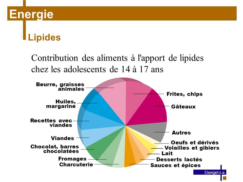 Energie Lipides. Contribution des aliments à l apport de lipides chez les adolescents de 14 à 17 ans.