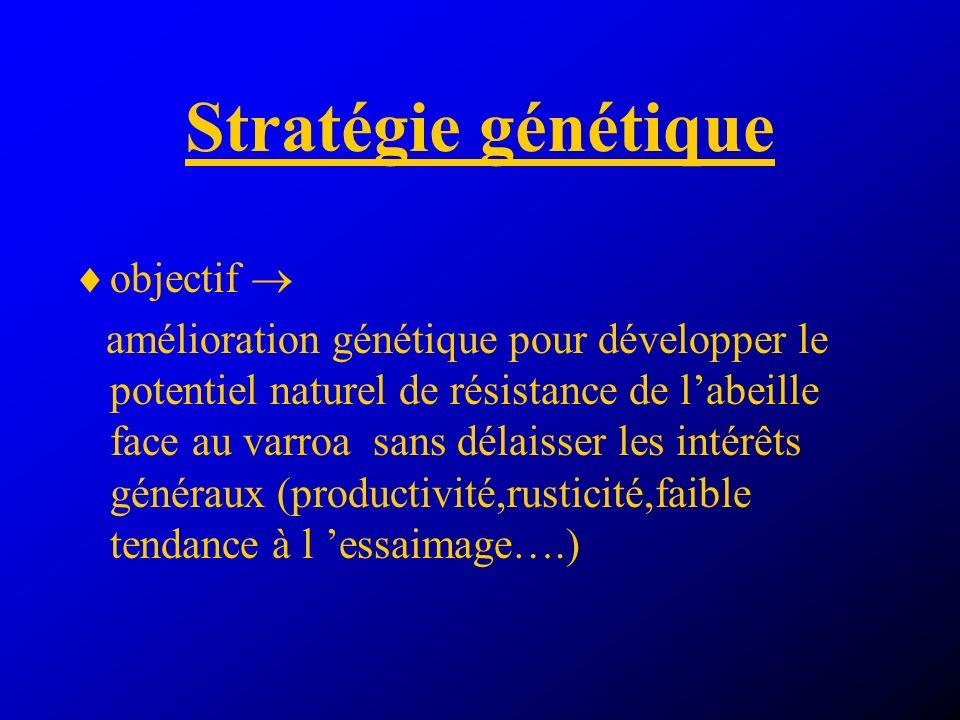 Stratégie génétique objectif 