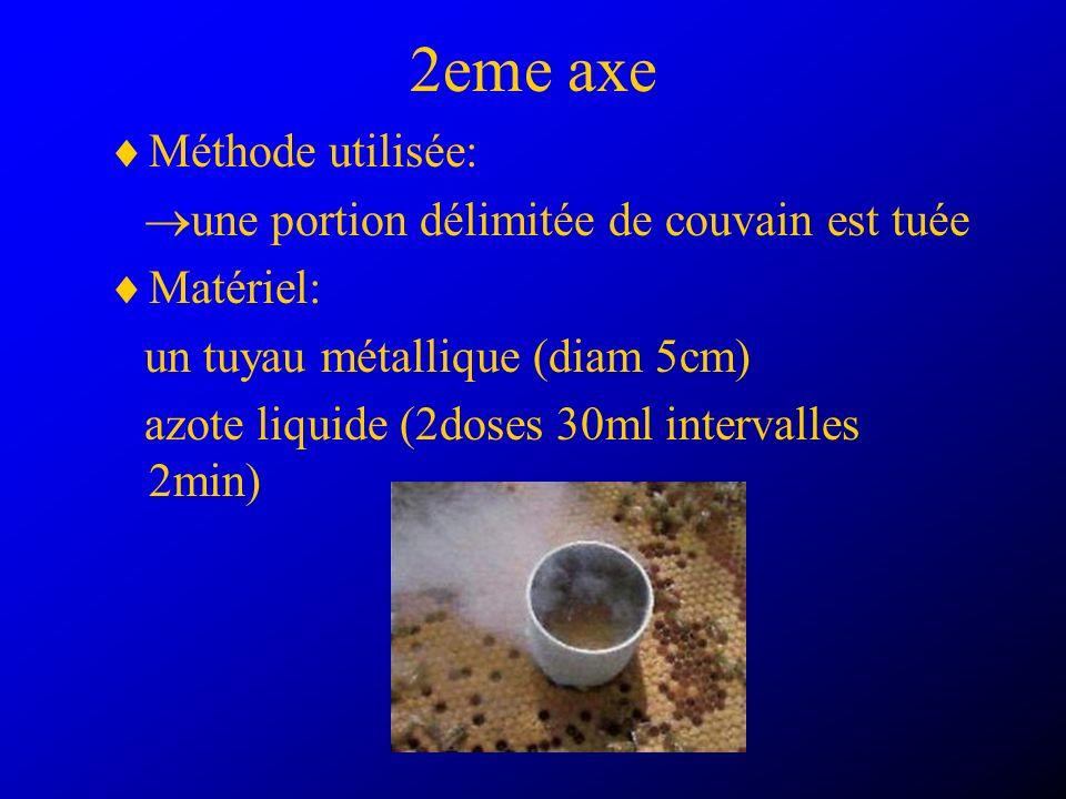 2eme axe Méthode utilisée: une portion délimitée de couvain est tuée