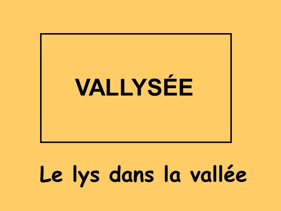 VALLYSÉE Le lys dans la vallée