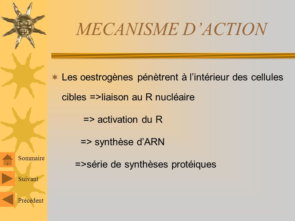 MECANISME D'ACTION Les oestrogènes pénètrent à l'intérieur des cellules cibles =>liaison au R nucléaire.