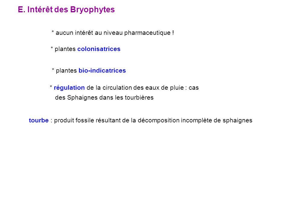 E. Intérêt des Bryophytes