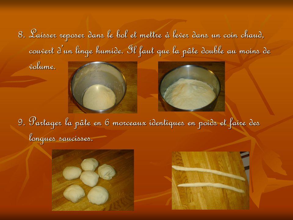 8. Laisser reposer dans le bol et mettre à lever dans un coin chaud, couvert d'un linge humide. Il faut que la pâte double au moins de volume.