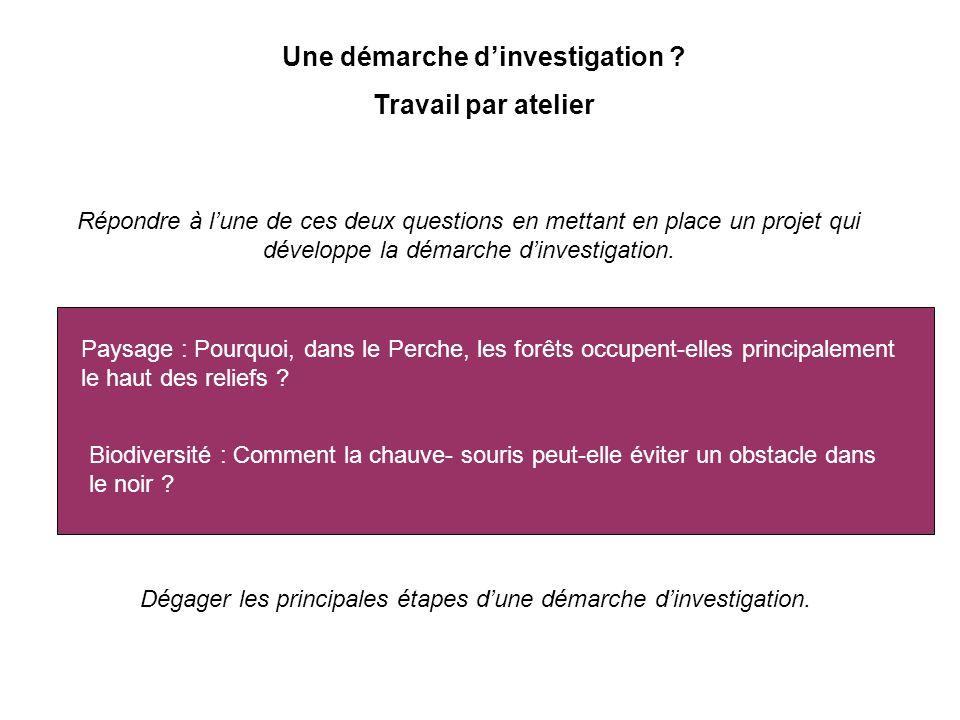 Une démarche d'investigation