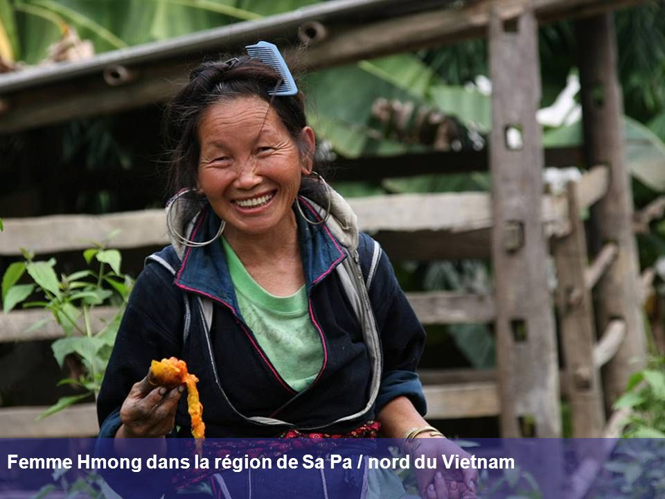 Femme Hmong dans la région de Sa Pa / nord du Vietnam