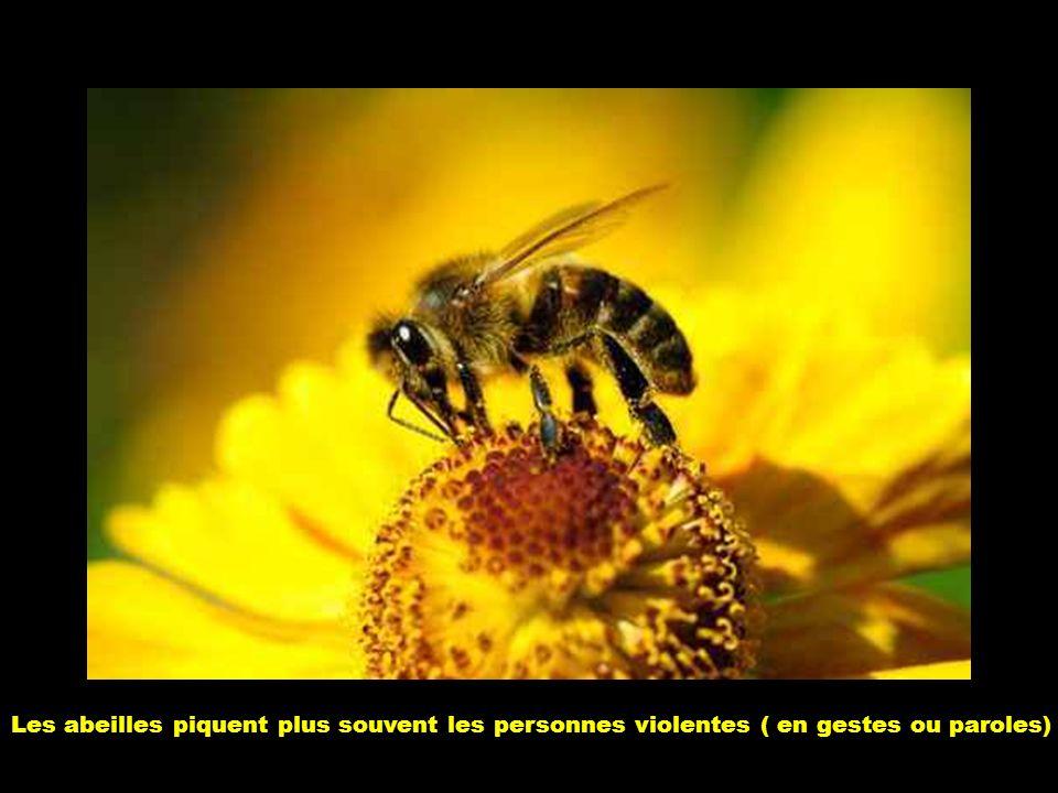 Les abeilles piquent plus souvent les personnes violentes ( en gestes ou paroles)