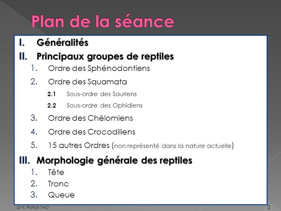 Plan de la séance Généralités Principaux groupes de reptiles