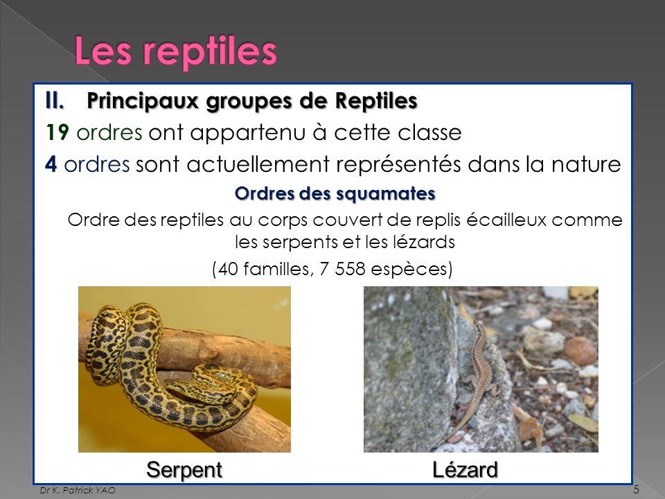 Les reptiles Principaux groupes de Reptiles