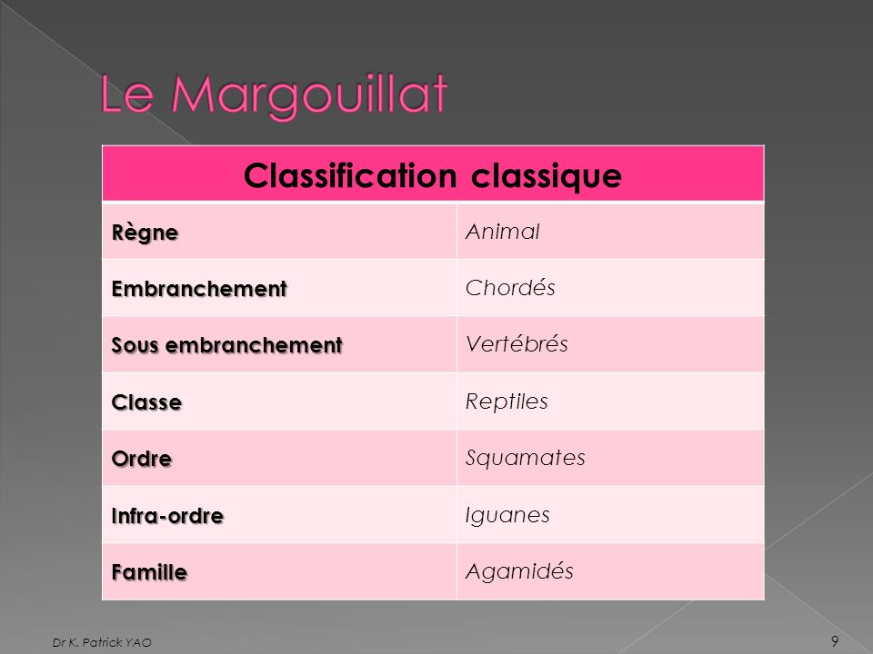 Classification classique
