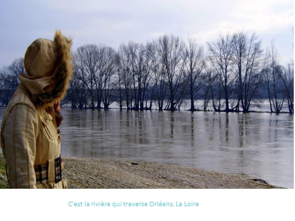 C est la rivière qui traverse Orléans. La Loire