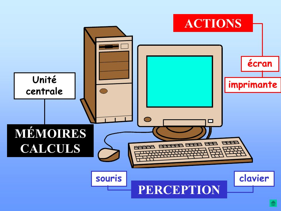 ACTIONS MÉMOIRES CALCULS PERCEPTION