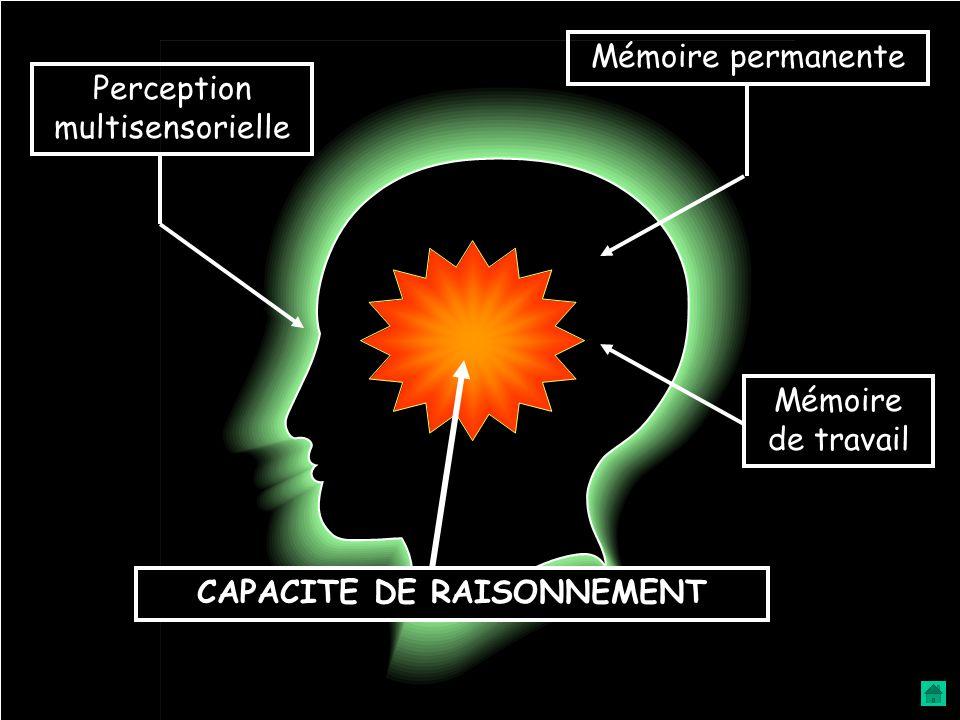 CAPACITE DE RAISONNEMENT