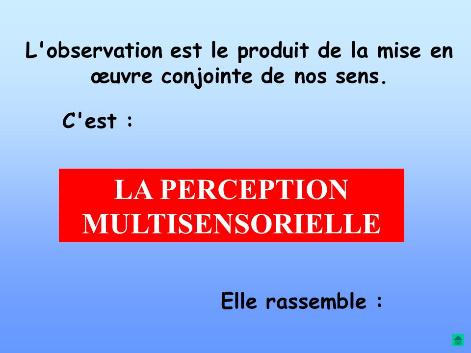 LA PERCEPTION MULTISENSORIELLE
