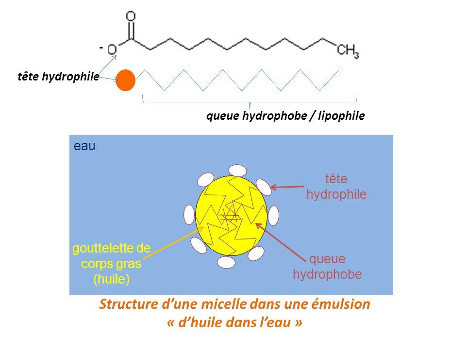 Structure d'une micelle dans une émulsion
