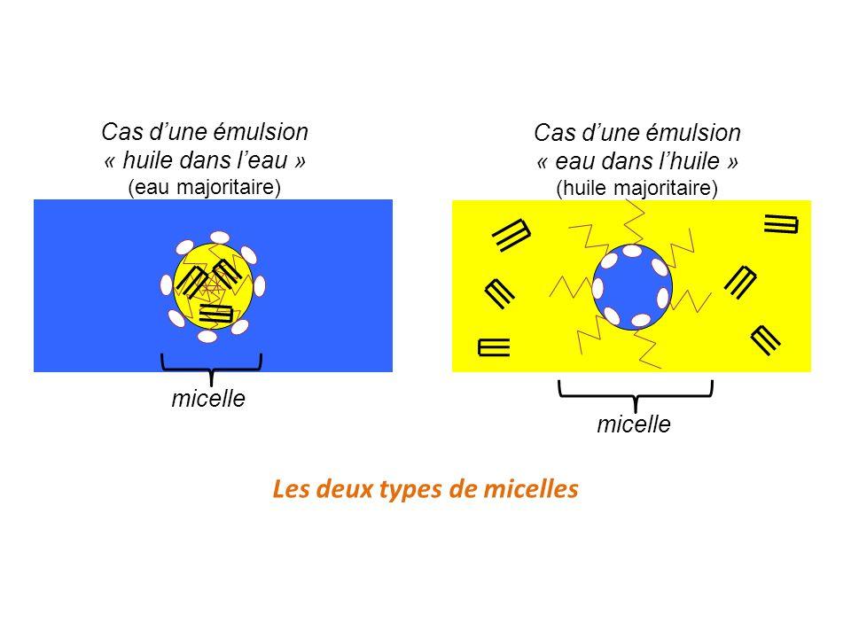 Les deux types de micelles