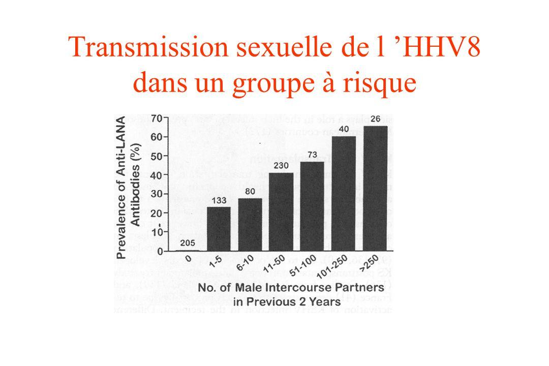 Transmission sexuelle de l 'HHV8 dans un groupe à risque