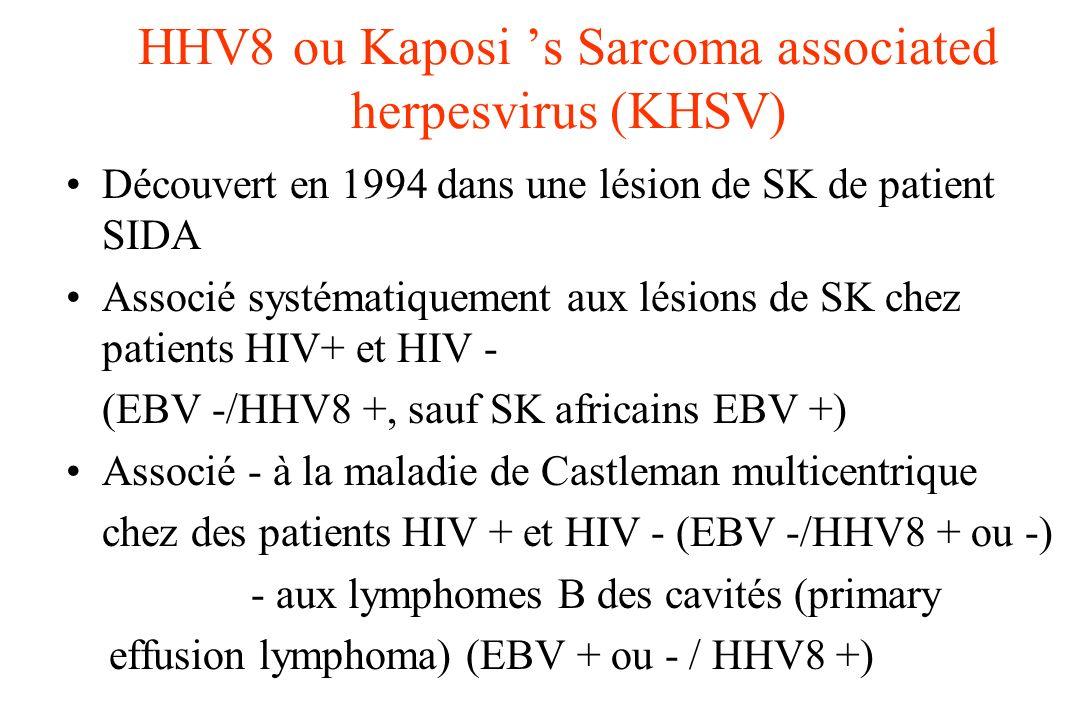 HHV8 ou Kaposi 's Sarcoma associated herpesvirus (KHSV)