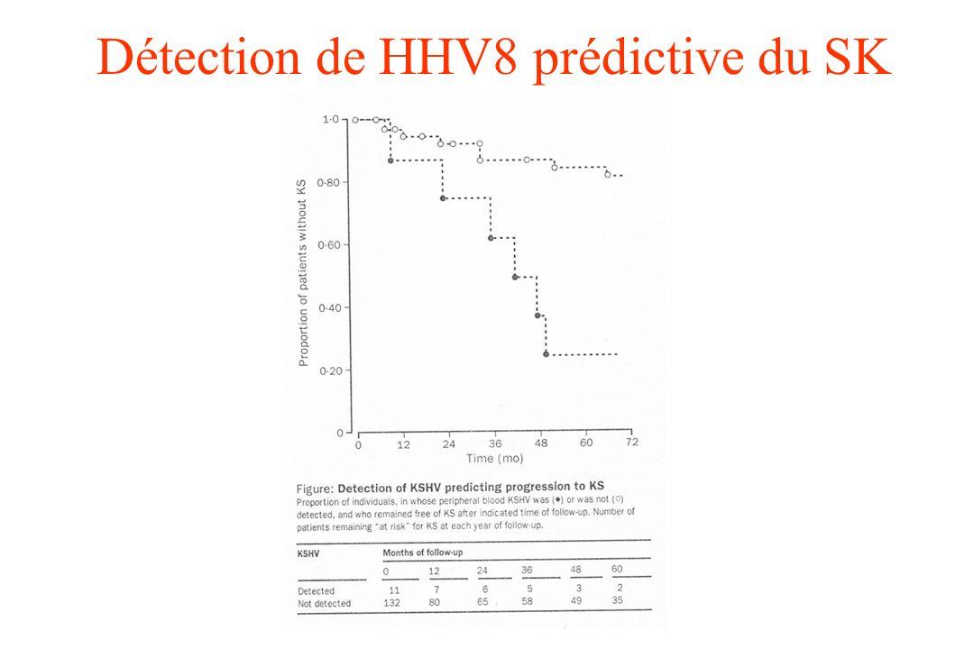 Détection de HHV8 prédictive du SK