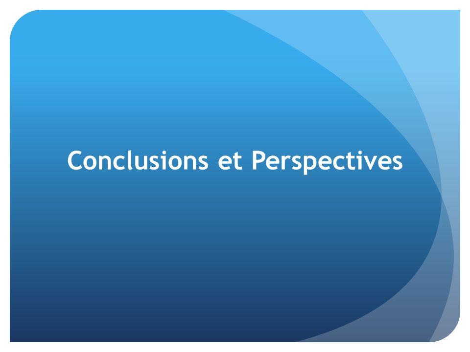 Conclusions et Perspectives