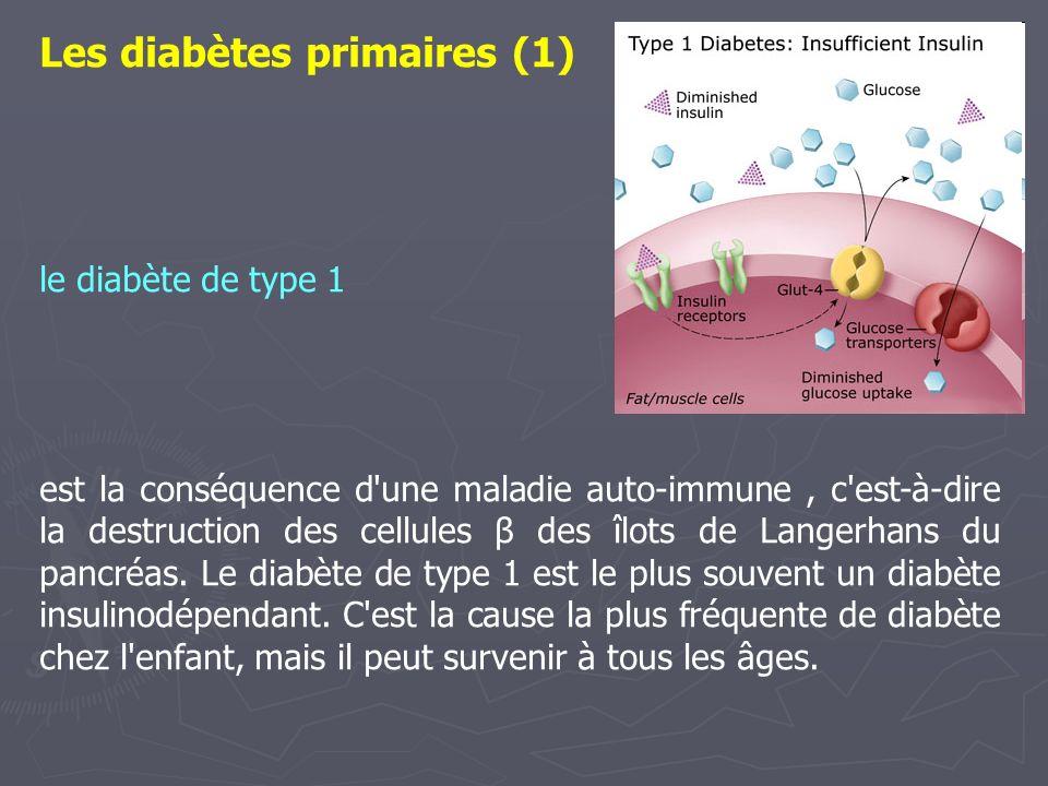 Les diabètes primaires (1)