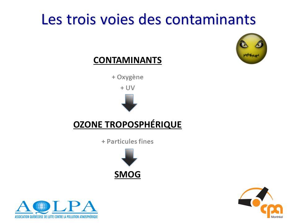 Les trois voies des contaminants