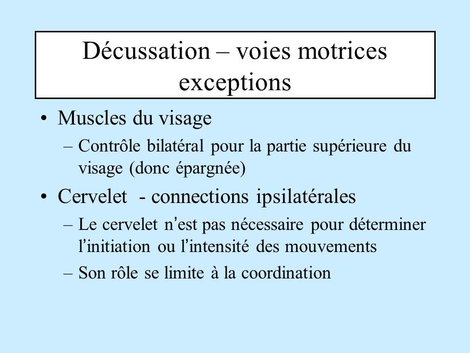 Décussation – voies motrices exceptions
