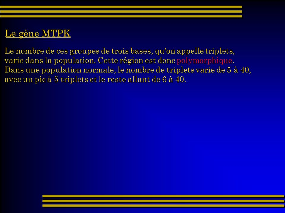 Le gène MTPK Le nombre de ces groupes de trois bases, qu on appelle triplets, varie dans la population. Cette région est donc polymorphique.