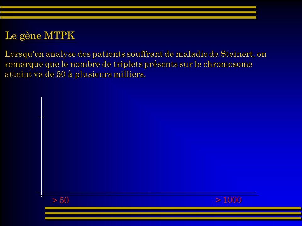 Le gène MTPK Lorsqu on analyse des patients souffrant de maladie de Steinert, on. remarque que le nombre de triplets présents sur le chromosome.