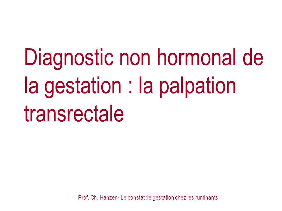 Diagnostic non hormonal de la gestation : la palpation transrectale