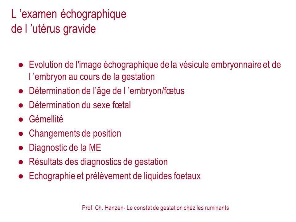 L 'examen échographique de l 'utérus gravide