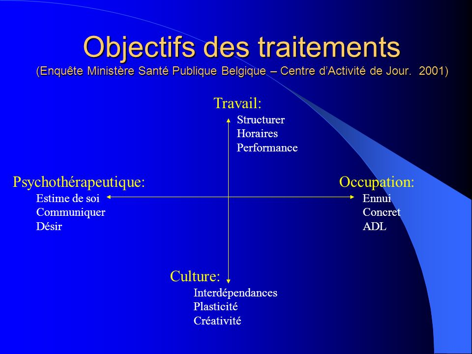 Objectifs des traitements (Enquête Ministère Santé Publique Belgique – Centre d'Activité de Jour. 2001)