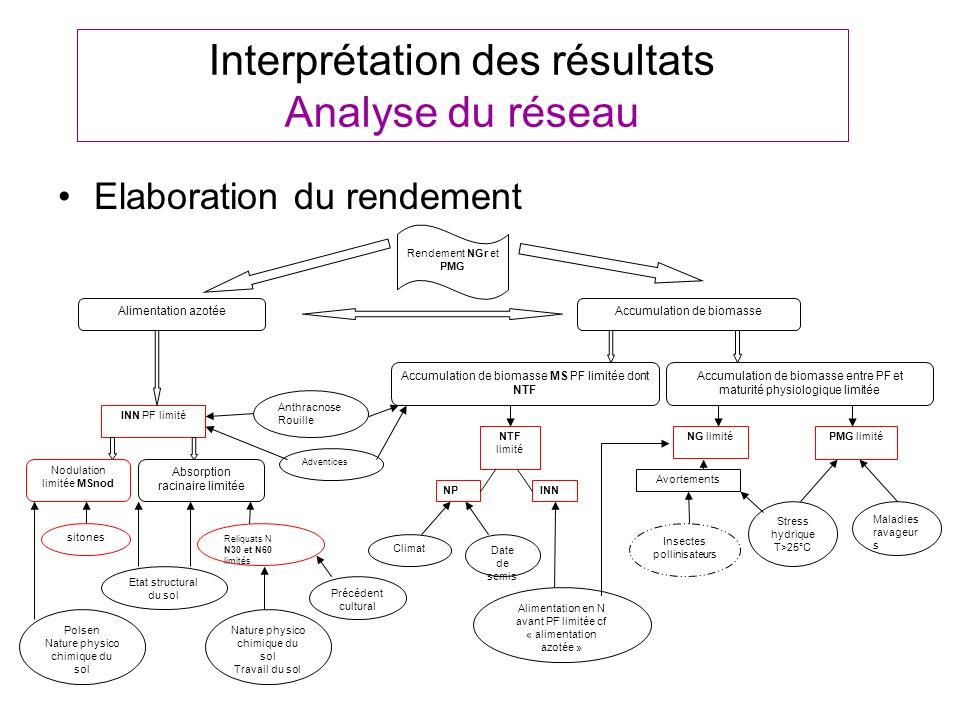 Interprétation des résultats Analyse du réseau