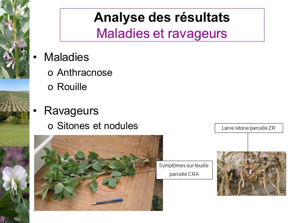 Analyse des résultats Maladies et ravageurs