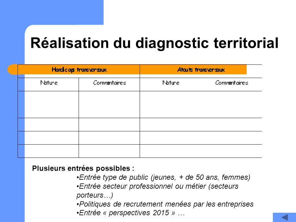 Réalisation du diagnostic territorial