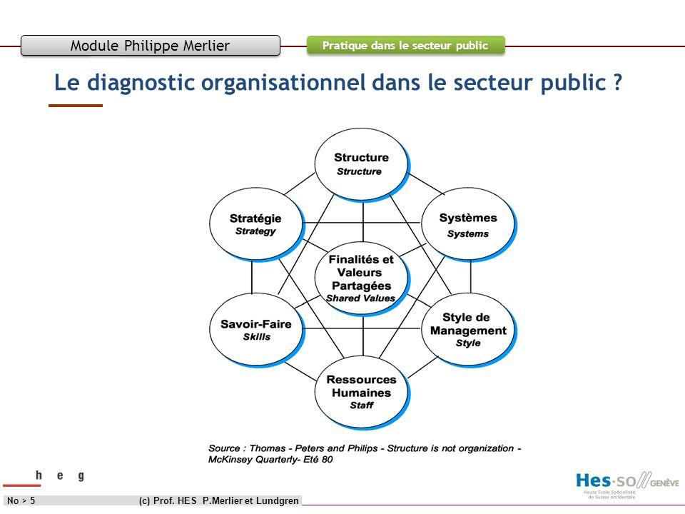 Le diagnostic organisationnel dans le secteur public