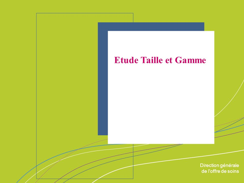 Etude Taille et Gamme ORGANISATION & MISSIONS Direction générale