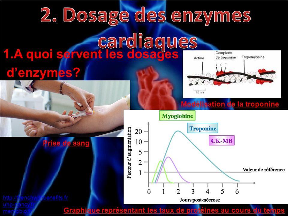 2. Dosage des enzymes cardiaques