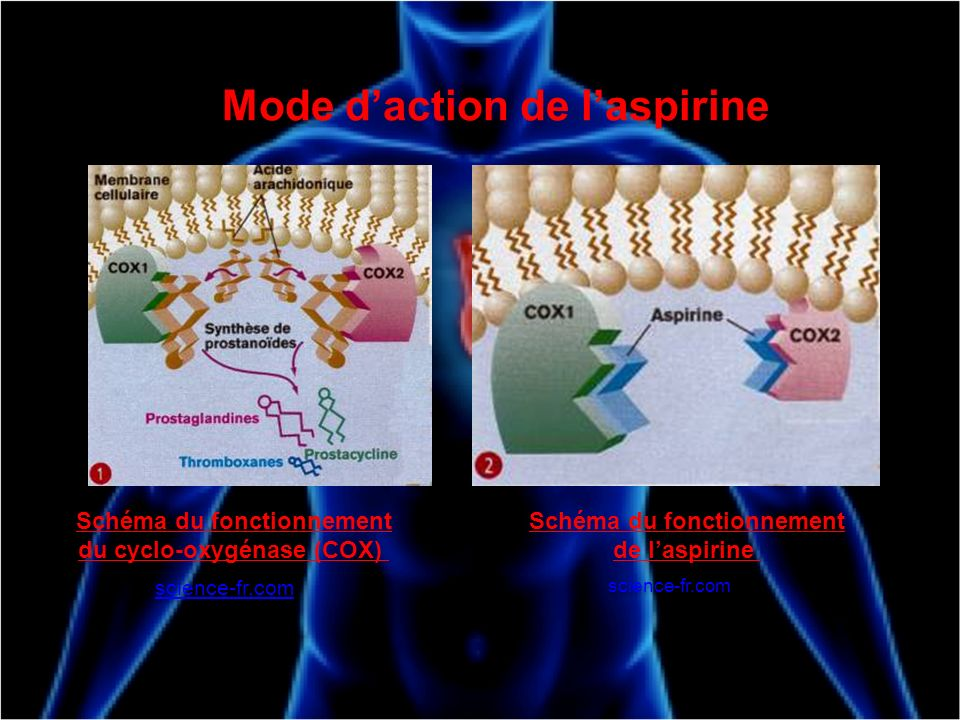 Mode d'action de l'aspirine