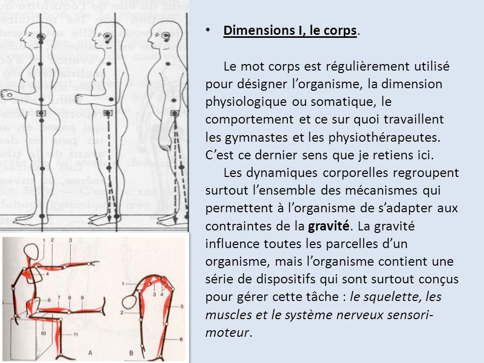 Dimensions I, le corps.