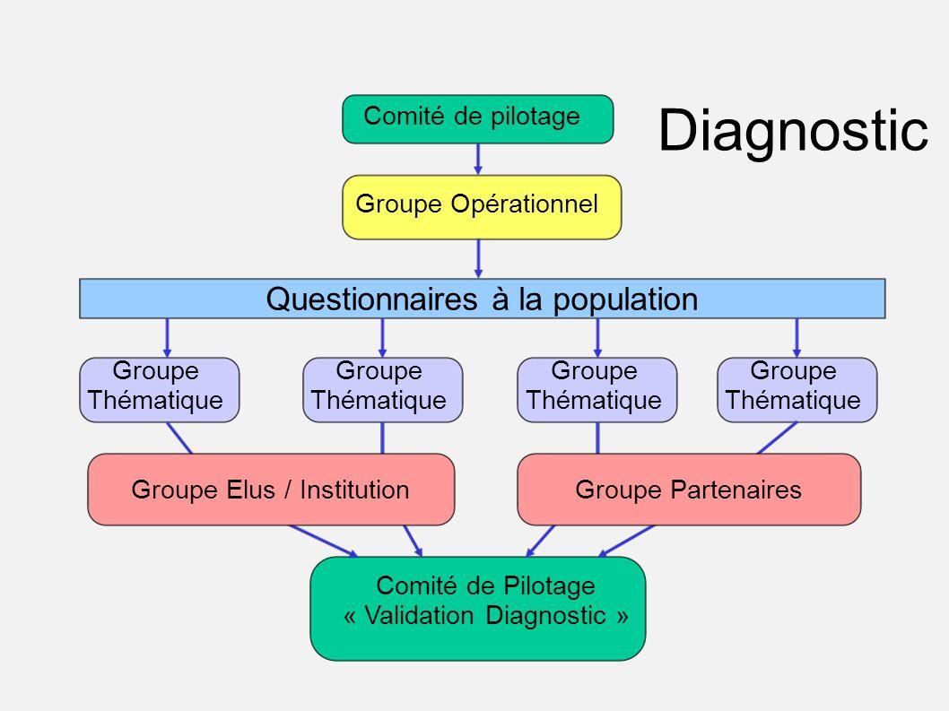 Diagnostic Questionnaires à la population Comité de pilotage