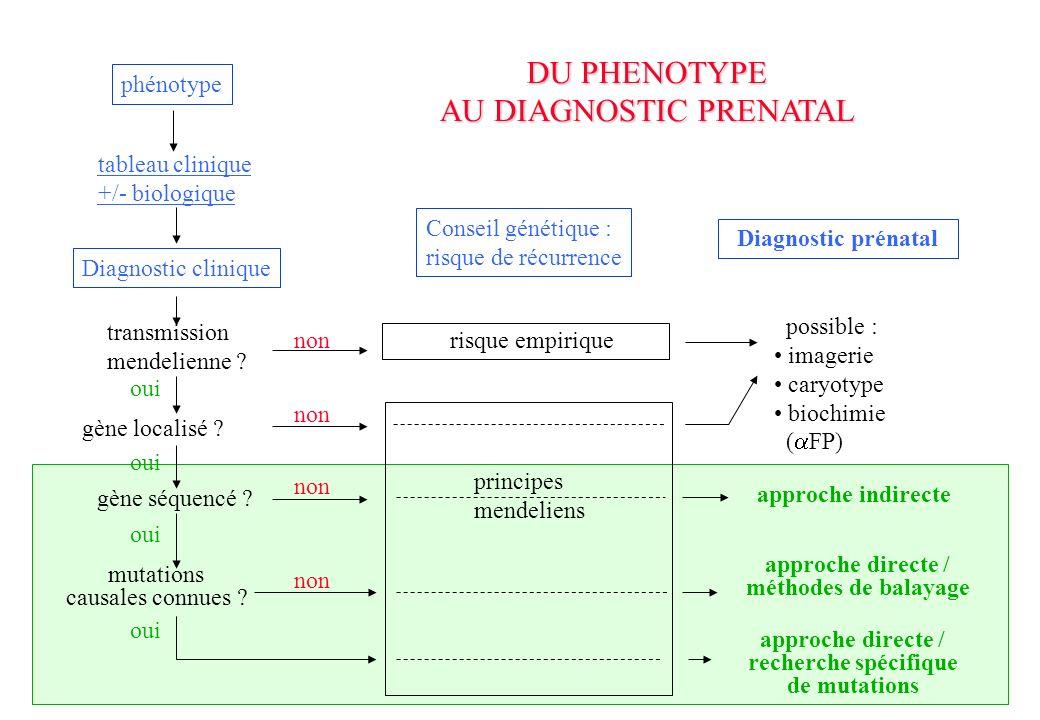AU DIAGNOSTIC PRENATAL