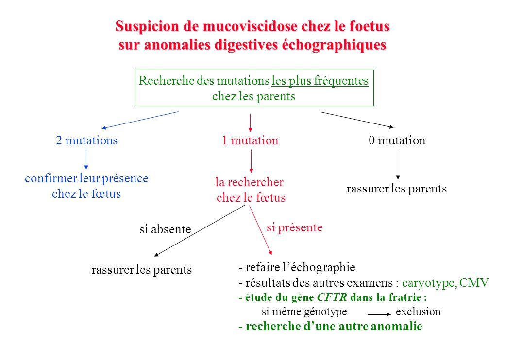 Suspicion de mucoviscidose chez le foetus