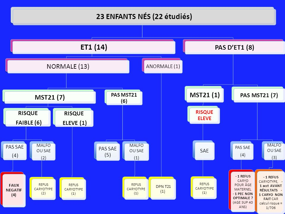 23 ENFANTS NÉS (22 étudiés) ET1 (14)